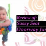 Sassy Seat Doorway Jumper